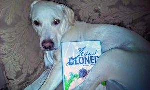 The blonde lab cross is Franklin, and he enjoys cuddling with a good book.