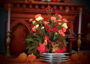 Nov 12 flowers