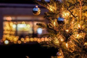 Christmas-Lights-Outdoor-Tree